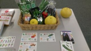 高知の野菜