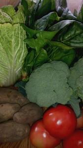 野菜フルキャスト